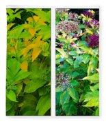 Golden Leaves To Purple Seeds Fleece Blanket