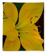Golden Lily Glow Fleece Blanket
