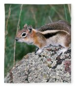 Golden Mantled Ground Squirrel Fleece Blanket