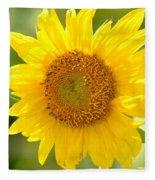 Golden Moment - Sunflower Fleece Blanket