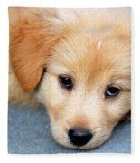 Retriever Puppy Fleece Blanket