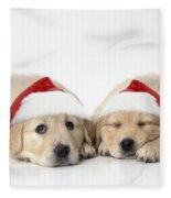 Golden Reriever Puppies, 7 Weeks Old Fleece Blanket