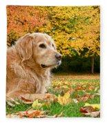 Golden Retriever Dog Autumn Day Fleece Blanket