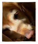 Golden Retriever Dog Quiet Time Fleece Blanket