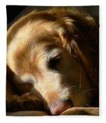 Golden Retriever Dog Sleeping In The Morning Light  Fleece Blanket