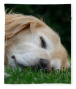 Golden Retriever Dog Sweet Dreams Fleece Blanket