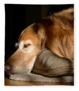 Golden Retriever Dog With Master's Slipper Fleece Blanket