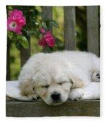 Golden Retriever Puppy Sleeping Fleece Blanket