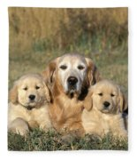 Golden Retriever With Puppies Fleece Blanket