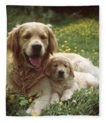 Golden Retrievers Dog And Puppy Fleece Blanket