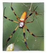 Golden Silk Spider Capturing A Stinkbug Fleece Blanket