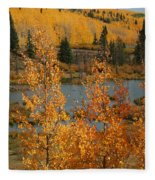 Golden Spot Fleece Blanket