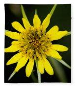 Golden Star Flower Yellow Salsify Glacier National Park Fleece Blanket