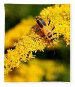 Goldenrod Beetle Fleece Blanket