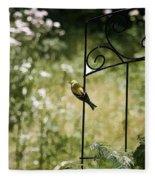 Goldfinch On The Lookout -19 Fleece Blanket