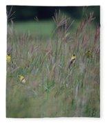 Goldfinch Party Fleece Blanket