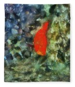 Goldfish Photo Art 05 Fleece Blanket