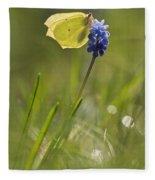 Gonepteryx Rhamni On The Blue Flower Fleece Blanket
