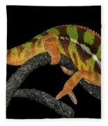 Good Night Chameleon Fleece Blanket