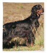 Gordon Setter Dog Fleece Blanket