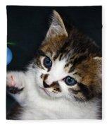 Gorgeous Christmas Kitten Fleece Blanket