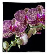 Gorgeous Orchids Fleece Blanket