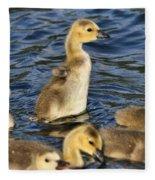 Gosling Showoff Fleece Blanket