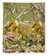 Little Ones Fleece Blanket