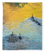 Goslings Morning Swim Fleece Blanket