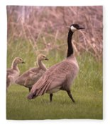 Goslings On A Walk Fleece Blanket