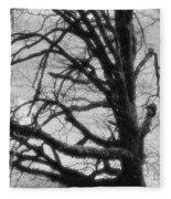 Gothic Oak Fleece Blanket