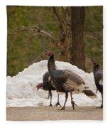 Gould's Wild Turkey Iv Fleece Blanket