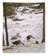 Gould's Wild Turkey Viii Fleece Blanket