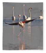 Graceful Flamingo Dance Fleece Blanket