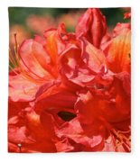 Grade A Azalea Fleece Blanket