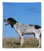 Grand Bleu De Gascogne Fleece Blanket
