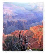 Grand Canyon 67 Fleece Blanket