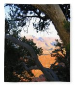 Grand Canyon 74 Fleece Blanket