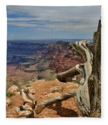 Grand Canyon And Dead Tree 1 Fleece Blanket
