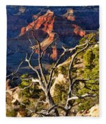 Grand Canyon Branches Fleece Blanket