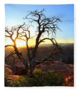 Grand Canyon Gathering The Light Fleece Blanket