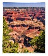 Grand Canyon Valley Fleece Blanket