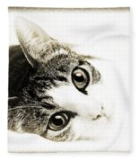 Grand Kitty Cuteness 3 High Key Fleece Blanket