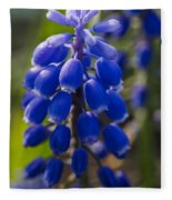 Grape Hyacinth Fleece Blanket