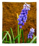 Grape Hyacinth And Sandstone  Fleece Blanket