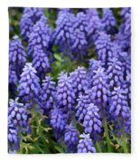 Grape Hyacinth At Thanksgiving Point - 1 Fleece Blanket
