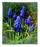 Grape Hyacinths 2014 Fleece Blanket