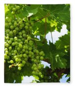 Grapes In A Vineyard Fleece Blanket
