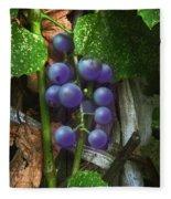 Grapes On The Vine Fleece Blanket
