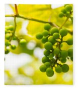 Grapes On The Vine - Finger Lakes Vineyard Fleece Blanket